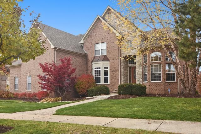 580 W Ruhl Road, Palatine, IL 60074 (MLS #10426874) :: Ani Real Estate