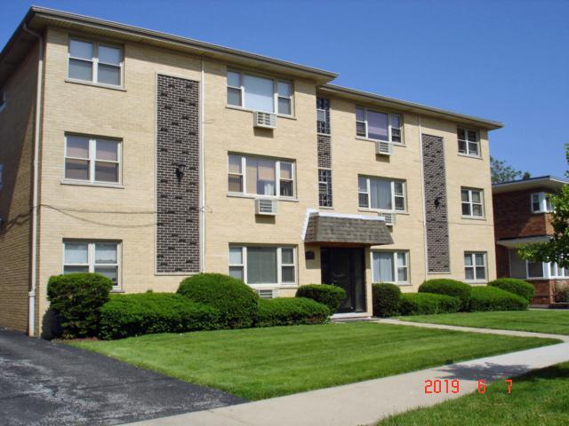386 Alles Street #103, Des Plaines, IL 60016 (MLS #10426969) :: Ani Real Estate