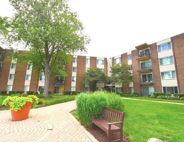 140 W Wood Street #128, Palatine, IL 60067 (MLS #10427094) :: The Spaniak Team