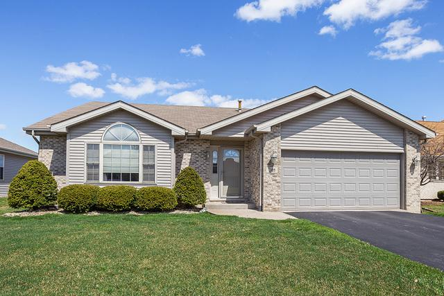 381 Saddle Run Lane, Beecher, IL 60401 (MLS #10427427) :: Property Consultants Realty