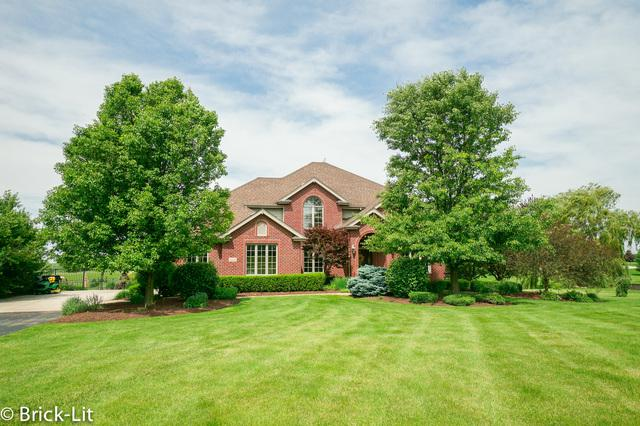24244 S Jos Place, Frankfort, IL 60423 (MLS #10427895) :: Baz Realty Network | Keller Williams Elite