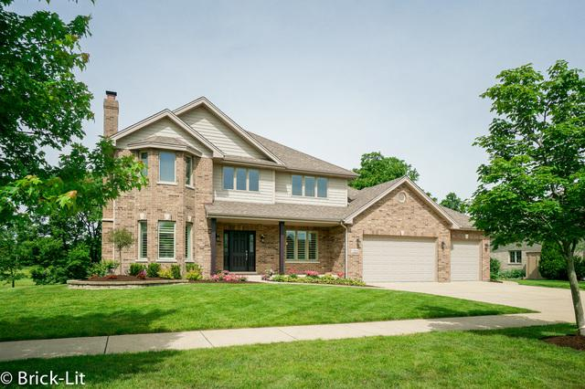 19410 Boulder Ridge Drive, Mokena, IL 60448 (MLS #10428216) :: Ryan Dallas Real Estate