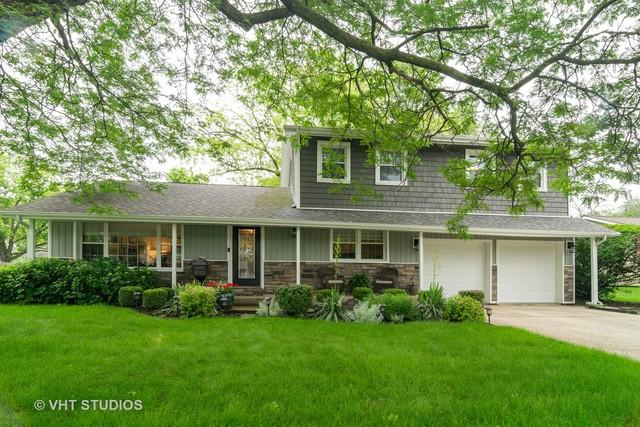 907 N Rohlwing Road, Palatine, IL 60074 (MLS #10429079) :: The Spaniak Team