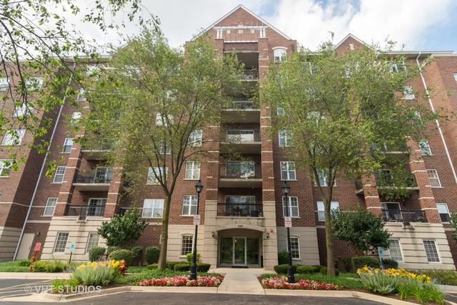 440 W Mahogany Court #206, Palatine, IL 60067 (MLS #10429104) :: Baz Realty Network | Keller Williams Elite