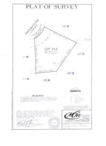 22779 Brookstone Court, Frankfort, IL 60423 (MLS #10430102) :: Ryan Dallas Real Estate