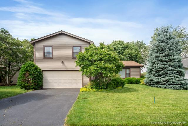 925 Valley View Trail, Carol Stream, IL 60188 (MLS #10430168) :: The Jacobs Group