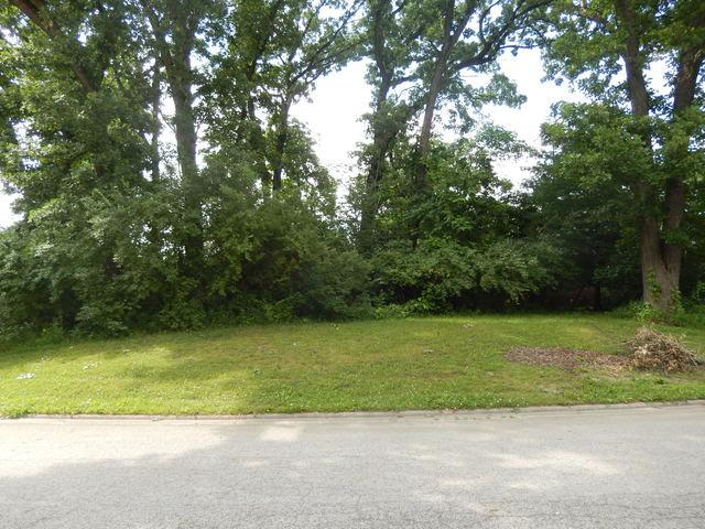 16985 Red Oak Drive, Lowell, IN 46356 (MLS #10430283) :: Property Consultants Realty