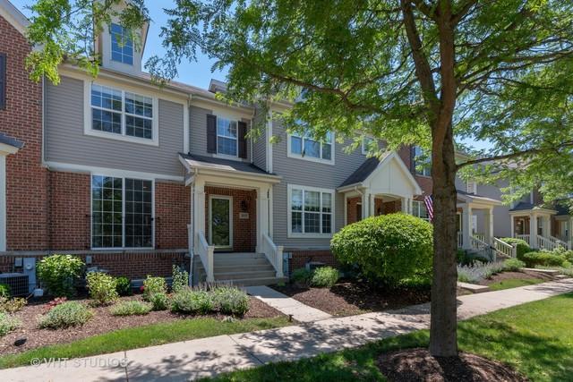 317 Bradbury Lane, Bartlett, IL 60103 (MLS #10431142) :: HomesForSale123.com