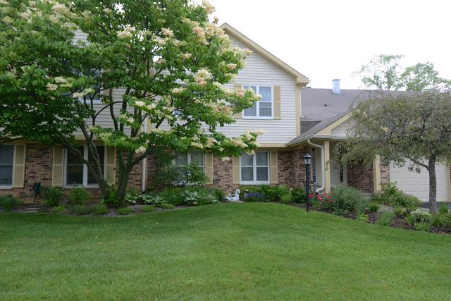 1287 Streamwood Lane #1287, Vernon Hills, IL 60061 (MLS #10431758) :: Property Consultants Realty
