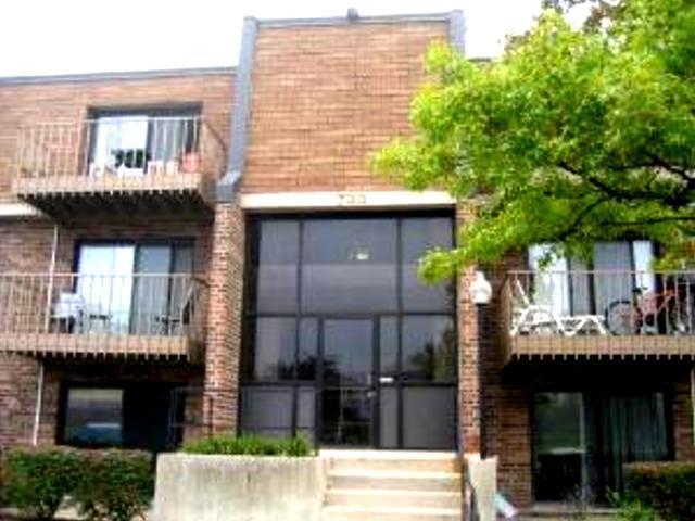 733 Limerick Lane 3A, Schaumburg, IL 60193 (MLS #10432586) :: Berkshire Hathaway HomeServices Snyder Real Estate