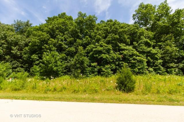 1299 Deer Path, Kankakee, IL 60901 (MLS #10432861) :: Baz Realty Network | Keller Williams Elite