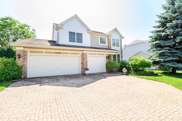 255 Pembrook Lane, Mundelein, IL 60060 (MLS #10432935) :: Property Consultants Realty
