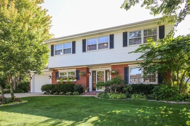 107 N Kaspar Avenue, Arlington Heights, IL 60005 (MLS #10433792) :: Berkshire Hathaway HomeServices Snyder Real Estate