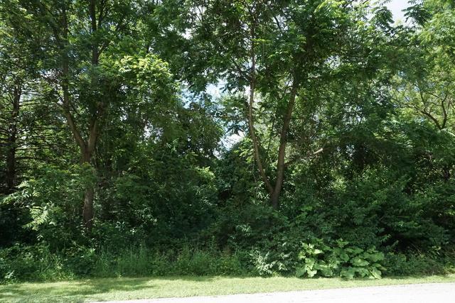 Lot 49 Sunset Drive, Campton Hills, IL 60175 (MLS #10434813) :: Ryan Dallas Real Estate