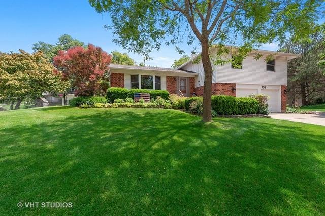 735 Concord Court, Algonquin, IL 60102 (MLS #10435166) :: The Perotti Group   Compass Real Estate