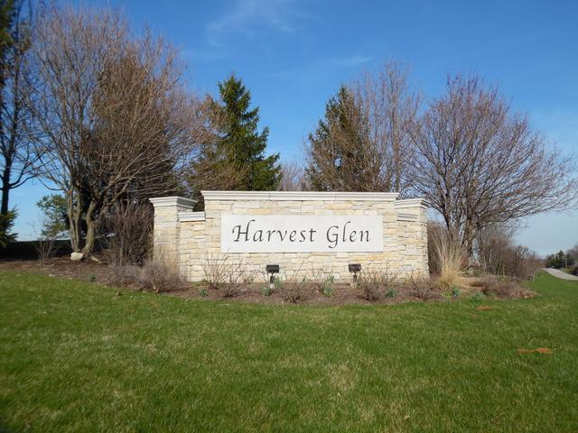28698 W Harvest Glen Circle, Cary, IL 60013 (MLS #10435652) :: The Wexler Group at Keller Williams Preferred Realty
