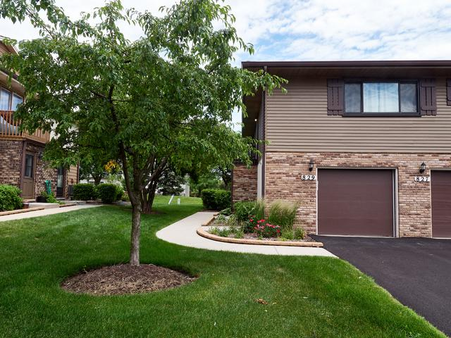 829 Dighton Lane 21E, Schaumburg, IL 60173 (MLS #10437001) :: Angela Walker Homes Real Estate Group