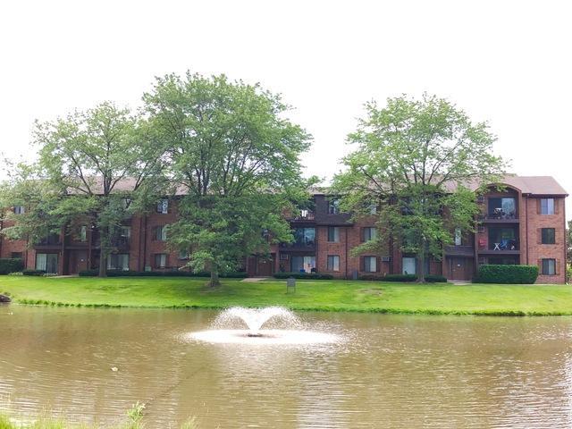 744 N Briar Hill Lane #3, Addison, IL 60101 (MLS #10438632) :: Baz Realty Network | Keller Williams Elite