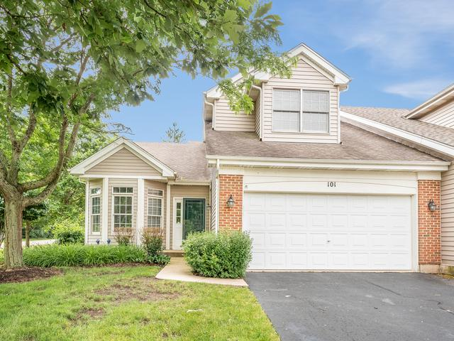 101 Fairfax Circle, Sugar Grove, IL 60554 (MLS #10439169) :: Berkshire Hathaway HomeServices Snyder Real Estate