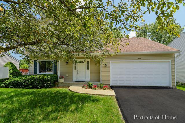 2700 Rolling Meadows Drive, Naperville, IL 60564 (MLS #10441856) :: The Wexler Group at Keller Williams Preferred Realty