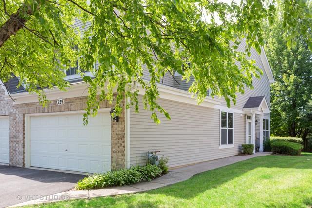 929 Sheridan Circle, Naperville, IL 60563 (MLS #10441940) :: Baz Realty Network   Keller Williams Elite