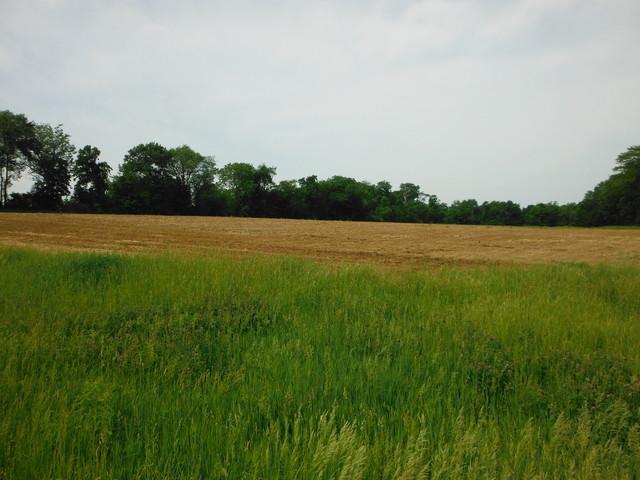 0 N 150th Road, Magnolia, IL 61336 (MLS #10442224) :: Ani Real Estate