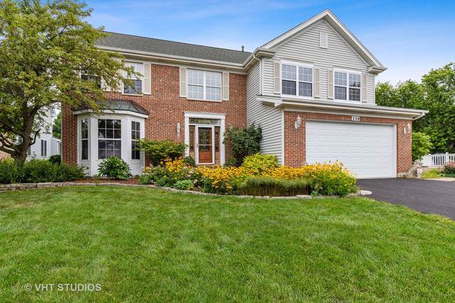 220 Prairie View Avenue, Grayslake, IL 60030 (MLS #10443624) :: Berkshire Hathaway HomeServices Snyder Real Estate