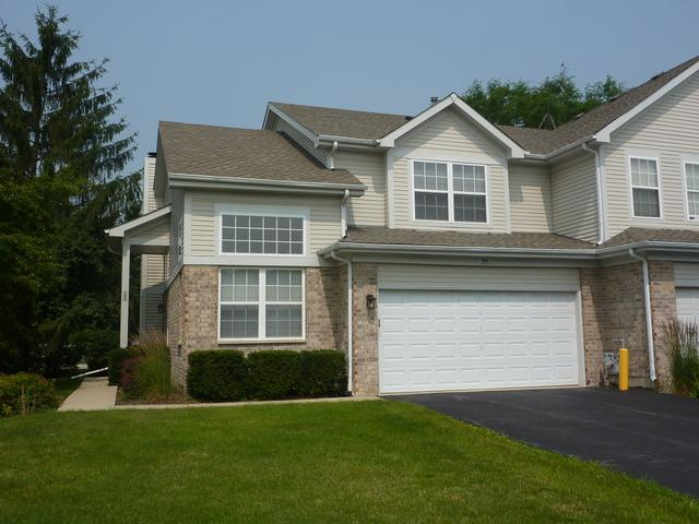 164 Avalon Court, Roselle, IL 60172 (MLS #10444231) :: Berkshire Hathaway HomeServices Snyder Real Estate