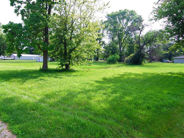 000 5th Street, Braceville, IL 60407 (MLS #10444407) :: Littlefield Group