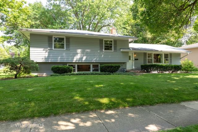 313 W Gartner Road, Naperville, IL 60540 (MLS #10444739) :: Baz Realty Network | Keller Williams Elite