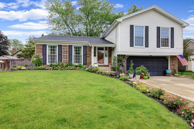843 Glendale Drive, Crystal Lake, IL 60014 (MLS #10446752) :: Berkshire Hathaway HomeServices Snyder Real Estate