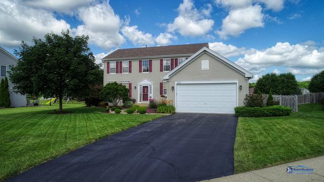 223 Tralee Lane, Mchenry, IL 60050 (MLS #10447052) :: Ryan Dallas Real Estate