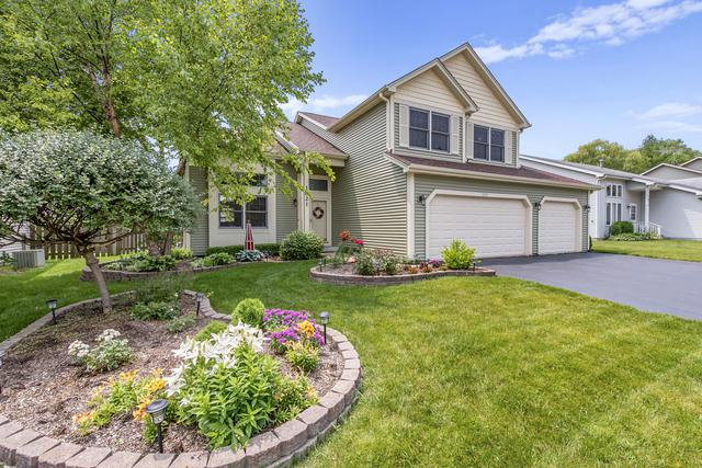 1021 Oaktree Trail, Lake Villa, IL 60046 (MLS #10447178) :: The Wexler Group at Keller Williams Preferred Realty