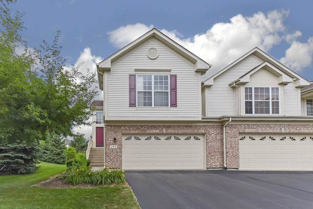 356 Lake Gillilan Way, Algonquin, IL 60102 (MLS #10447487) :: Property Consultants Realty