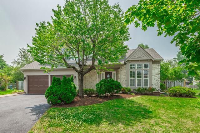 1550 Stockton Court, Bartlett, IL 60103 (MLS #10447626) :: The Wexler Group at Keller Williams Preferred Realty