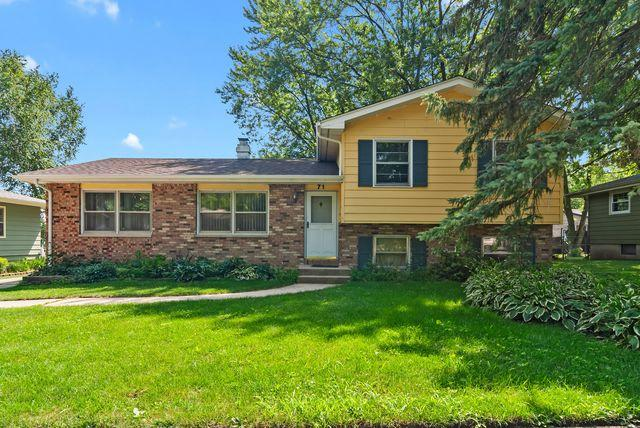71 Trenton Avenue, South Elgin, IL 60177 (MLS #10448001) :: The Wexler Group at Keller Williams Preferred Realty