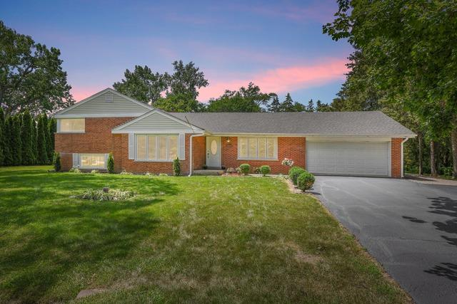 1008 W Wildwood Drive, Prospect Heights, IL 60070 (MLS #10448017) :: Berkshire Hathaway HomeServices Snyder Real Estate