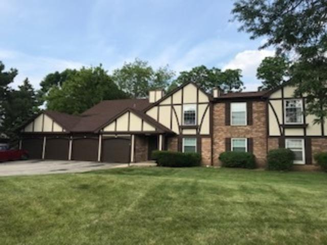 4800 Kimball Hill Drive A1, Rolling Meadows, IL 60008 (MLS #10448199) :: The Perotti Group | Compass Real Estate