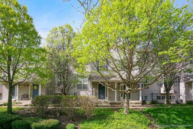 1293 Chestnut Lane #1293, Yorkville, IL 60560 (MLS #10448554) :: Berkshire Hathaway HomeServices Snyder Real Estate
