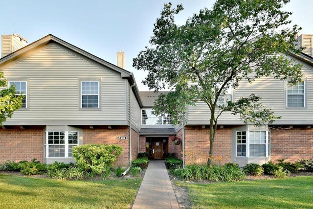 133 Idle Wild Court #6, Schaumburg, IL 60195 (MLS #10448774) :: Berkshire Hathaway HomeServices Snyder Real Estate