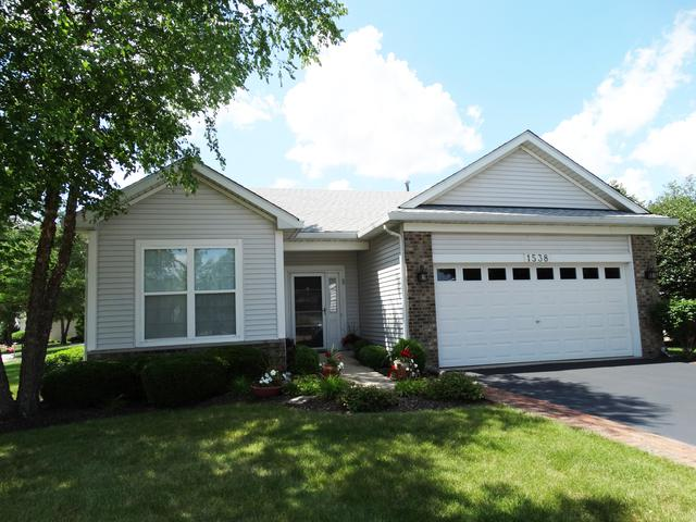 1538 Benzie Circle, Romeoville, IL 60446 (MLS #10448846) :: Angela Walker Homes Real Estate Group