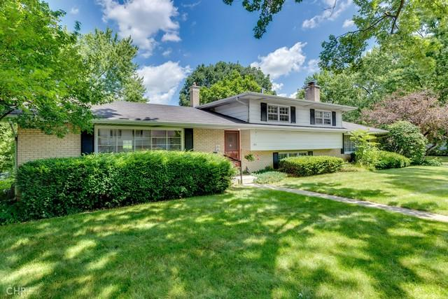 141 Tamarack Avenue, Naperville, IL 60540 (MLS #10449087) :: Baz Realty Network | Keller Williams Elite