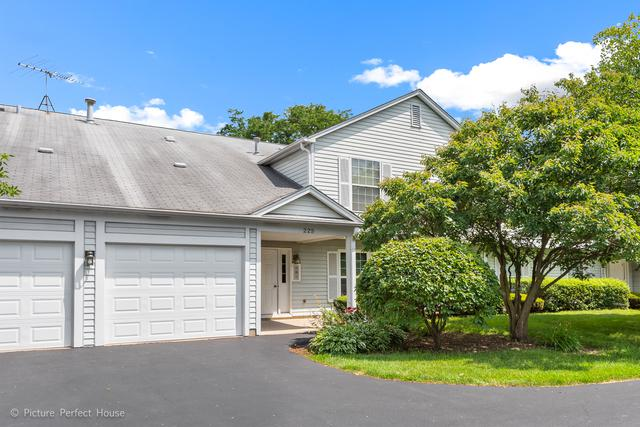 225 Hampshire Court 201C, Naperville, IL 60565 (MLS #10449333) :: Berkshire Hathaway HomeServices Snyder Real Estate