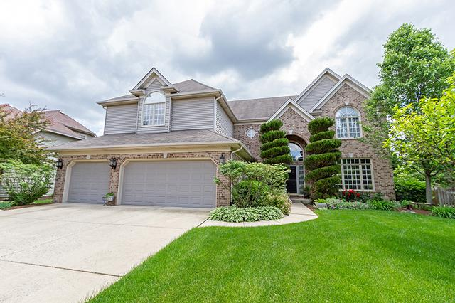 521 W Thornwood Drive, South Elgin, IL 60177 (MLS #10449820) :: Ryan Dallas Real Estate