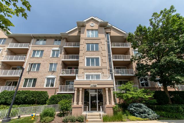 1705 Pavilion Way #207, Park Ridge, IL 60068 (MLS #10449912) :: Berkshire Hathaway HomeServices Snyder Real Estate