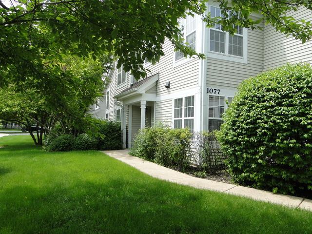 1077 Providence Lane, Buffalo Grove, IL 60089 (MLS #10450108) :: Baz Realty Network | Keller Williams Elite