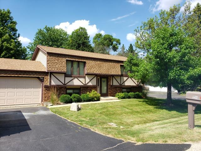 1208 Quincy Avenue, Johnsburg, IL 60051 (MLS #10450579) :: Lewke Partners