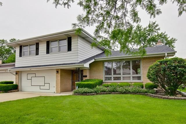 162 Ambleside Road, Des Plaines, IL 60016 (MLS #10450701) :: Berkshire Hathaway HomeServices Snyder Real Estate