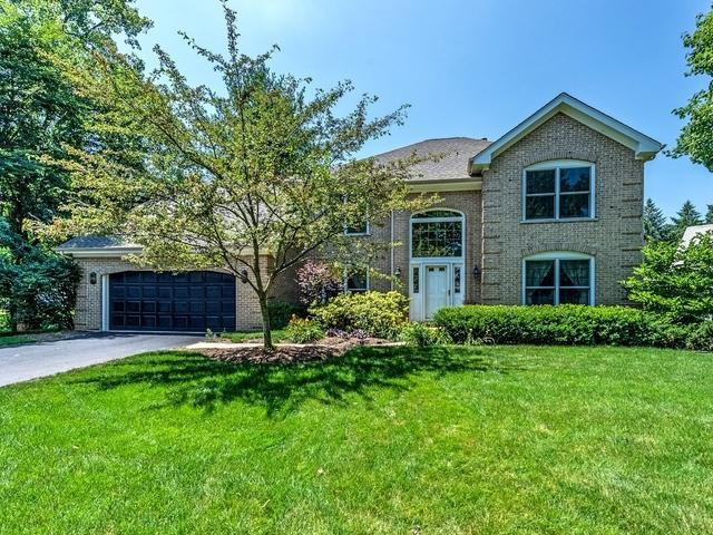 56 Rock River Court, Naperville, IL 60565 (MLS #10450961) :: The Wexler Group at Keller Williams Preferred Realty