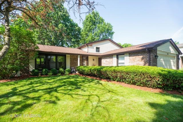 1515 E Fleming Drive S, Arlington Heights, IL 60004 (MLS #10451030) :: Baz Realty Network | Keller Williams Elite
